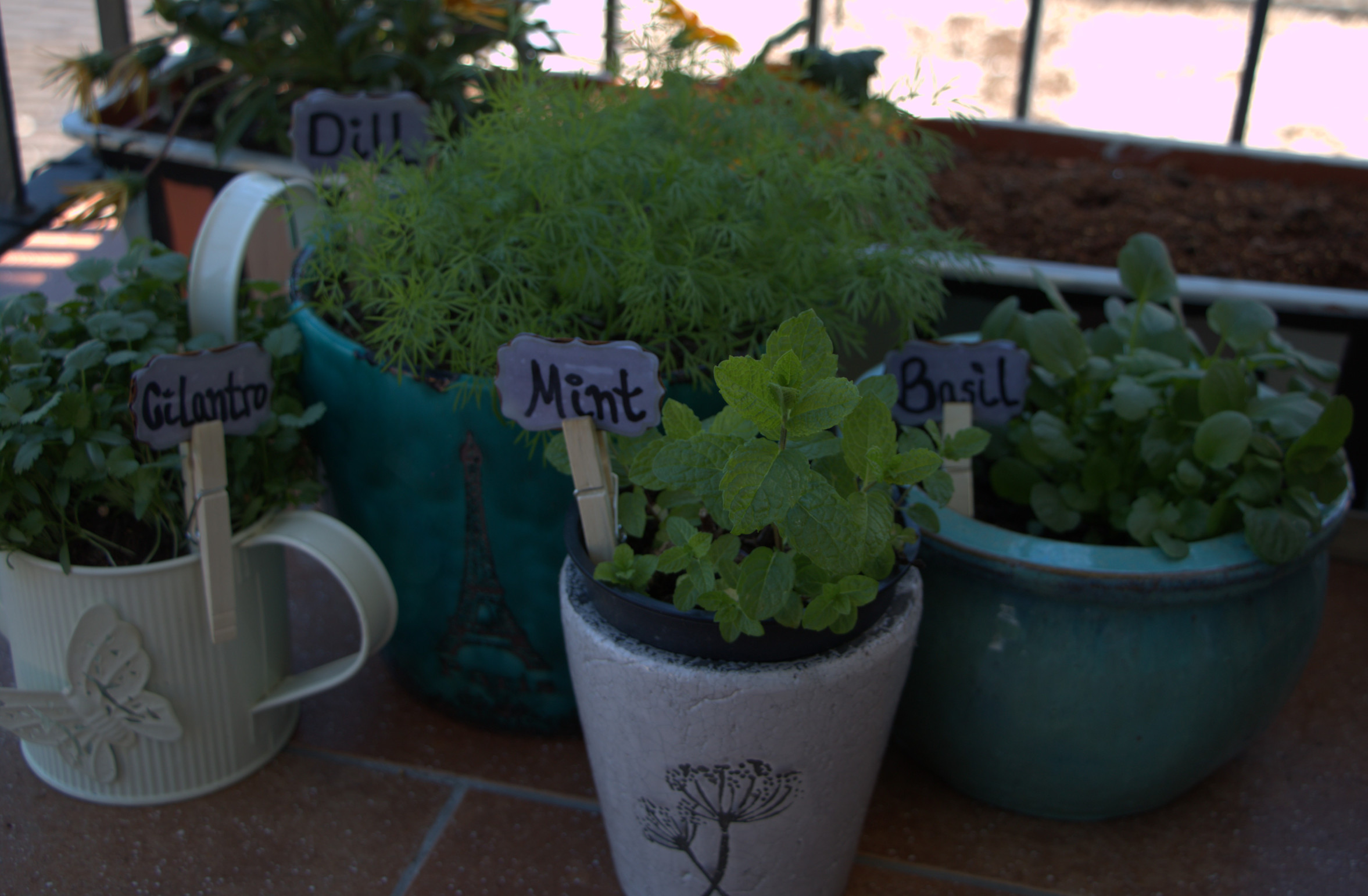 How To Make Cute Diy Garden Labels